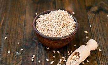 Senior Care Nutrition: Barley Month