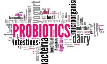 What are Probiotics and Do Seniors Need Them?